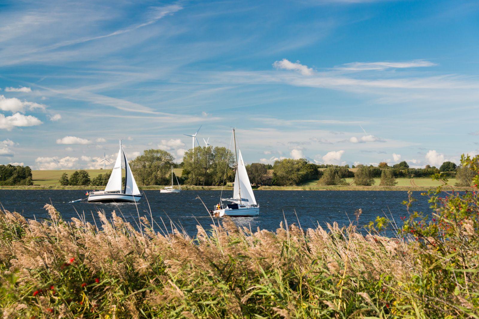 Durch die Schlei segeln ist idyllisch, manchmal liegt man auch im Wind. Die Landschaft bietet immer wieder neues Sehenswertes. ©peno-penofoto/AdobeStock