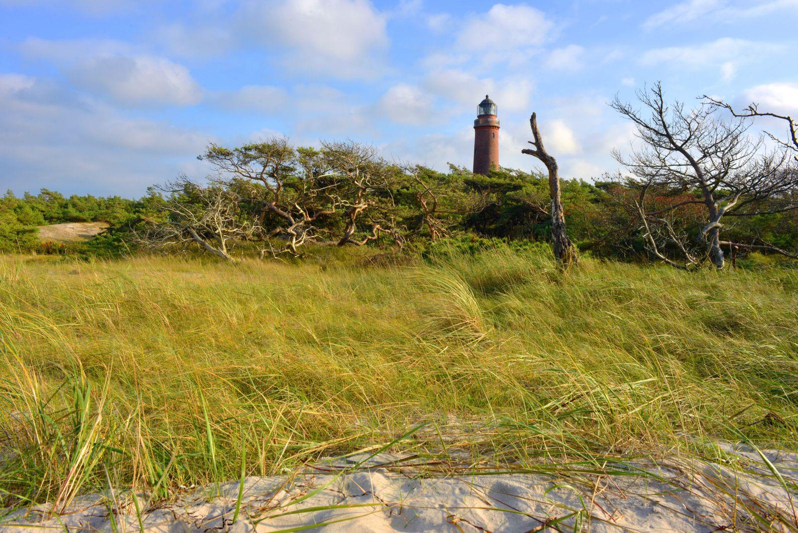 Auf dem Darß geht es durch Dünenlandschaften. ©Sinuswelle/AdobeStock