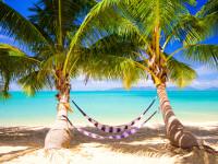 Traumziel Seychellen – Entdecken Sie den Indischen Ozean!