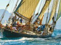 Gemeinsam in einem Boot: Teamwork