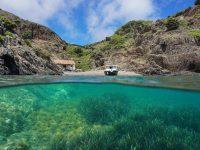 Ankern und Seegraswiesen – Wie Segler zum Schutz beitragen können