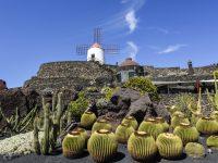 Vom Winter in den ewigen Frühling: Segeln um Lanzarote und die Kanarischen Inseln
