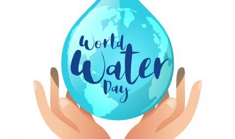 Heimische und internationale Wasserschutzorganisationen