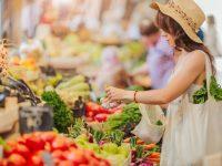 Segeln und Nachhaltigkeit – Tipps für den nächsten Urlaubstörn: auf Landgängen